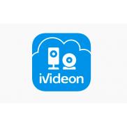Ividion
